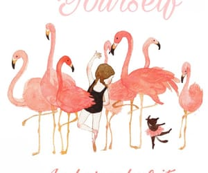 ballet, flamingo, and quote image
