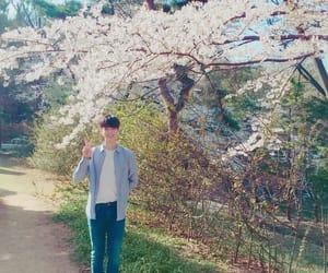 eunwoo, kpop, and astro image