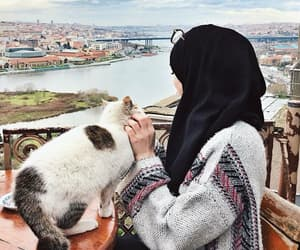 cat, hijab, and view image