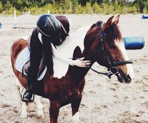 animals, girls, and long hair image