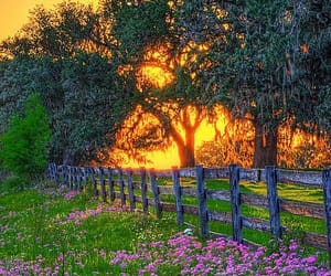 country living, countryside, and fence image
