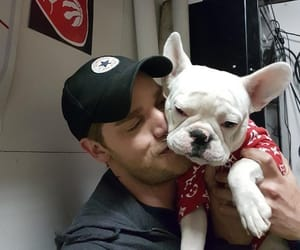 actor, pet, and puppy image