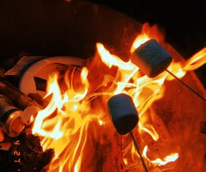 fire, marshmallow, and roasting image