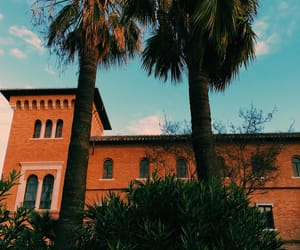 monastery, palmtrees, and rome image