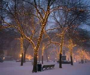 boston, christmas, and winter image