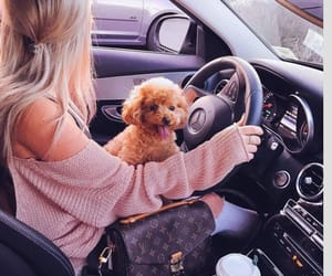 dog, girl, and car image