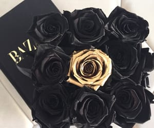 black, roses, and gold image