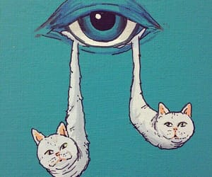 cat, cry, and eye image