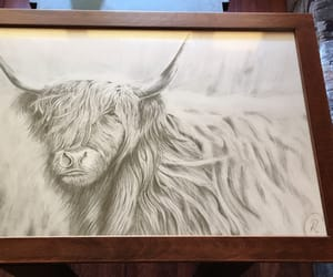 art, design, and cow image