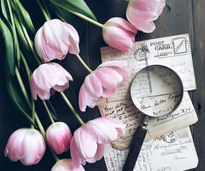 flowers, letters, and loupe image