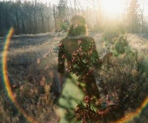 Image by Traceyanne McCartney
