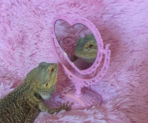 lizard, pink, and cute image