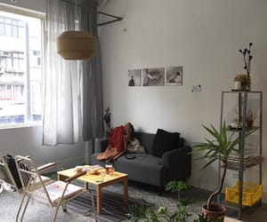 apartment, cozy, and interior design image