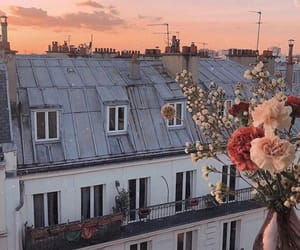sunset, flowers, and paris image
