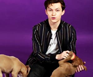 gif, Hot, and puppies image