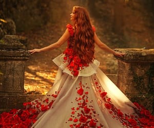 enchanted, dress, and fantasy image