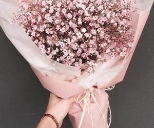 beautiful, fresh, and flowers image