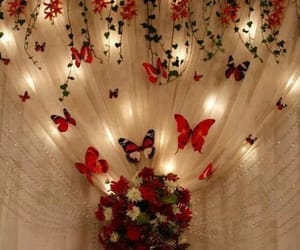 decoration, butterfly, and light image