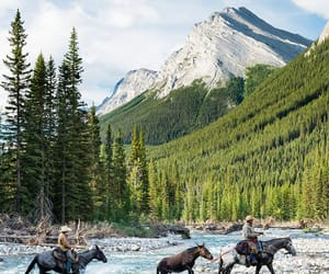 canada, horses, and places image