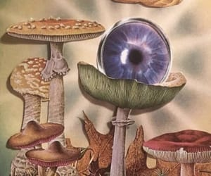 background, eyes, and psychedelic image