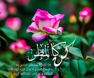 rose, ﺍﻗﻮﺍﻝ, and صور  image