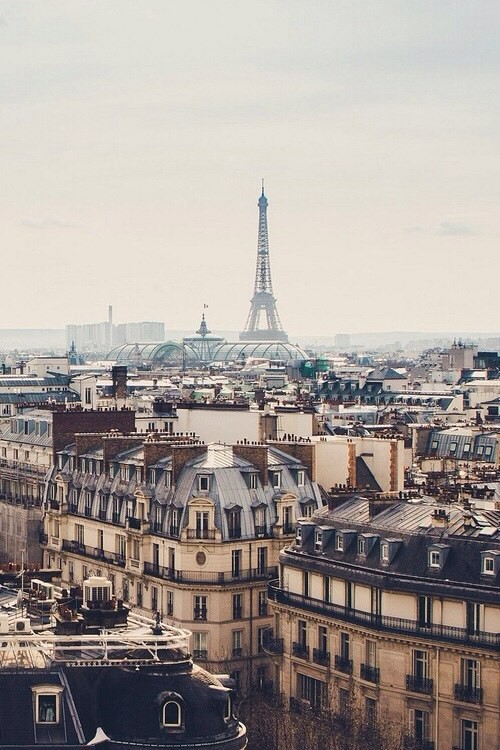 article, cities, and paris image