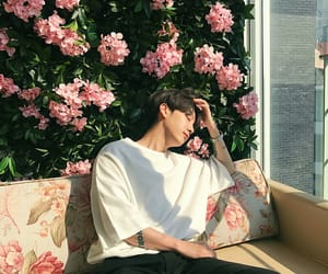 aesthetic, asian boy, and flowers image