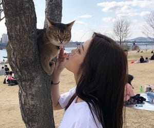 asian, beautiful, and cat image