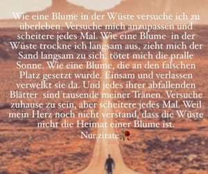 blume, sterben, and texte image