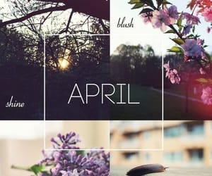 april, flower, and natural image