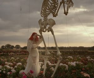 tim burton, skeleton, and flowers image