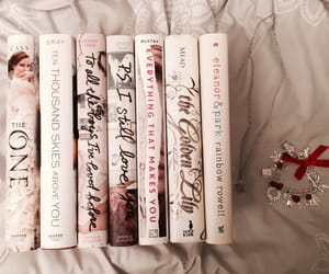 article, hush hush, and becca fitzpatrick image