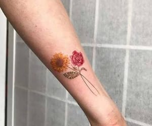 flower, red, and rose image