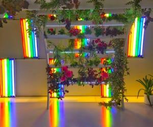 flowers, neon, and rainbow image