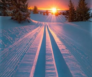 snow, nature, and sunset image