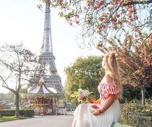 blonde, flowers, and france image