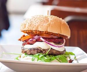burger and hamburger image
