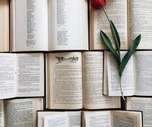 books, aesthetic, and flowers image
