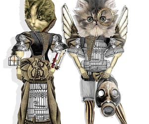 etsy, kitten, and cat image