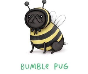 bumble bee, funny, and pug image