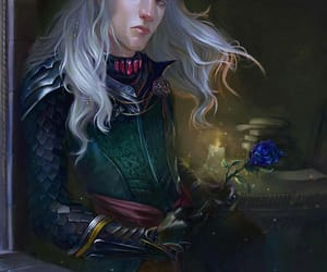 blue rose, house targaryen, and silver prince image