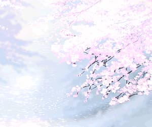 anime, cherry blossom, and gif image