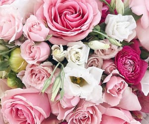 beauty, floral, and flowers image
