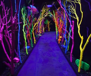 art. colorful and meow wolf image