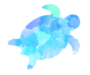 turtle and blue image