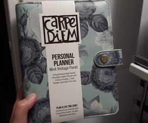 brand, carpe diem, and mint image