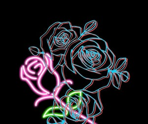 wallpaper, black, and rose image