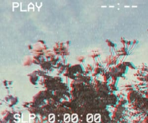 80s, aesthetic, and flowers image