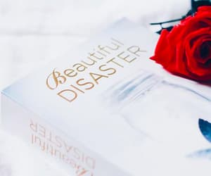 beautiful disaster, book, and jamie mcguire image