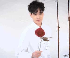 actor, chinese, and flowers image